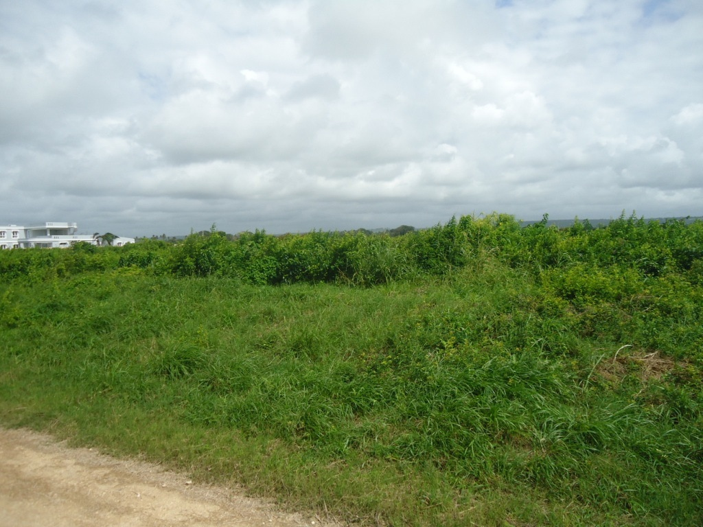 1 Acre land for sale in Vipingo Beach Estate | Danco Limited